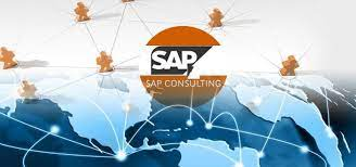 download 14 - Diving into SAP Consultants